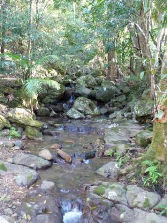 Take a walk up the property's creek to a beautiful waterfall